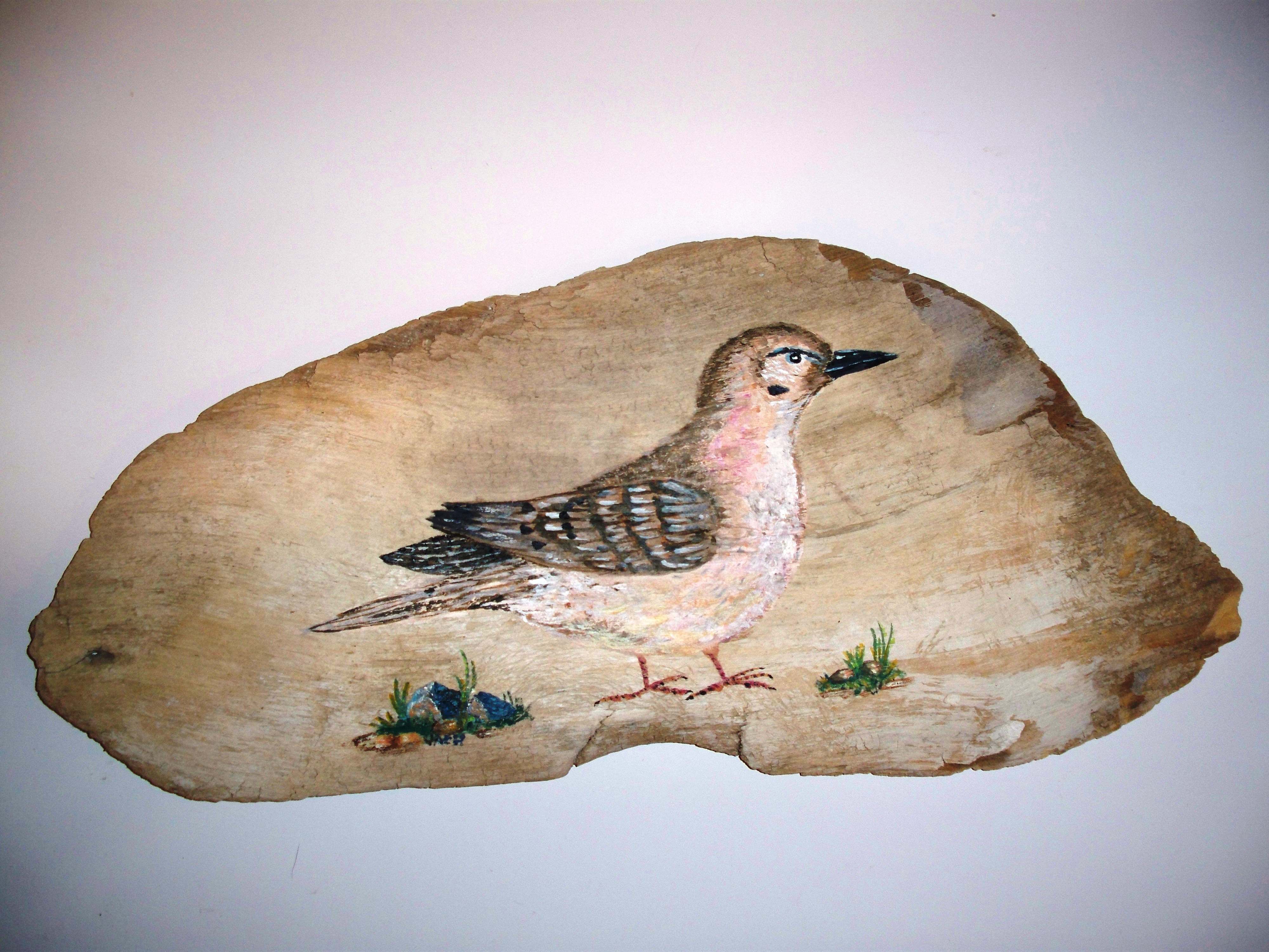 Driftwood Paintings And Creations Wood Carving And